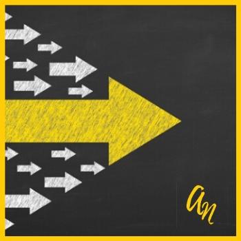 Jouw routekaart naar een succesvol bedrijf